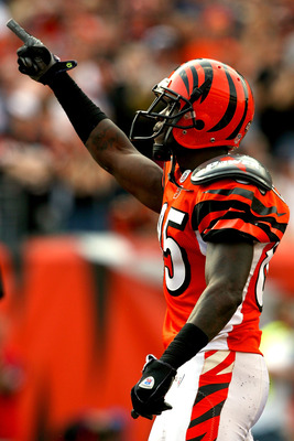 CINCINNATI - NOVEMBER 02: Chad Johnson #85 of the Cincinnati Bengals celebrates a touchdown against the Jacksonville Jaguars at Paul Brown Stadium November 2, 2008 in Cincinnati, Ohio.  (Photo by Matthew Stockman/Getty Images)