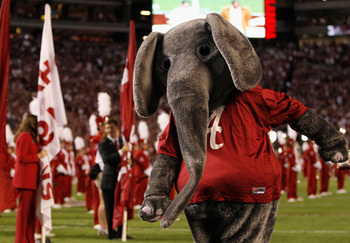 TUSCALOOSA, AL - OCTOBER 02:  Big Al, mascot of the Alabama Crimson Tide, against the Florida Gators at Bryant-Denny Stadium on October 2, 2010 in Tuscaloosa, Alabama.  (Photo by Kevin C. Cox/Getty Images)