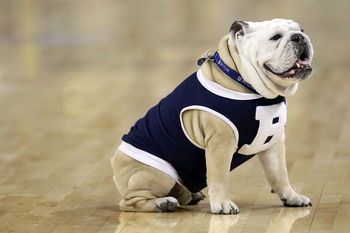 HOUSTON, TX - APRIL 02:  Blue II of the Butler Bulldogs sits on the court as his team celebrates defeating the Virginia Commonwealth Rams during the National Semifinal game of the 2011 NCAA Division I Men's Basketball Championship at Reliant Stadium on Ap