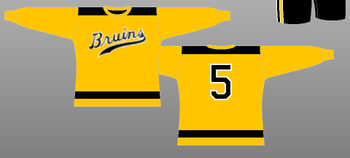 Bruins09_display_image