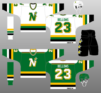 Northstars17_display_image