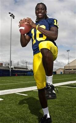 Michiganqb_display_image