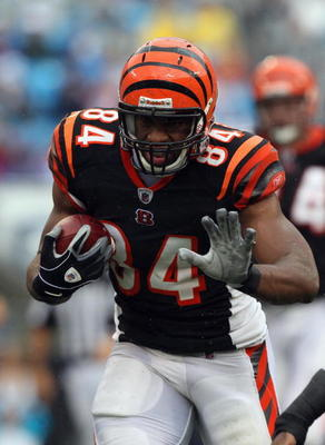 CHARLOTTE, NC - SEPTEMBER 26:  Jermaine Gresham #84 of the Cincinnati Bengals against the Carolina Panthers during their game at Bank of America Stadium on September 26, 2010 in Charlotte, North Carolina.  (Photo by Streeter Lecka/Getty Images)