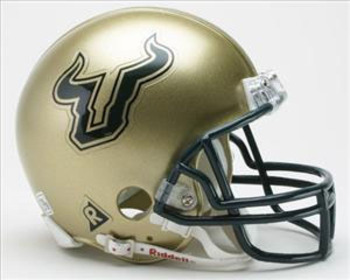 Bulls-helmet_display_image