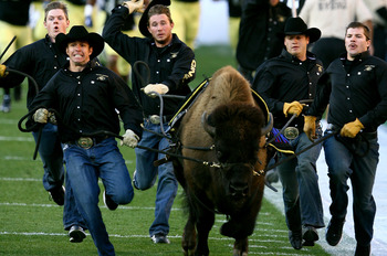 BOULDER, CO - OCTOBER 17: The Colorado Buffaloes mascot Ralphie runs onto the field prior to the game against the Kansas Jayhawks at Folsom Field on October 17, 2009 in Boulder, Colorado. (Photo by Garrett W. Ellwood/Getty Images)