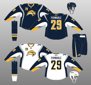 Sabres24_display_image