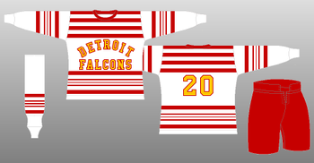 Falcons_display_image