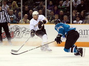 SAN JOSE, CA - NOVEMBER 09:  Teemu Selanne #8 of the Anaheim Ducks is defended by Niclas Wallin #7 of the San Jose Sharks at HP Pavilion on November 9, 2010 in San Jose, California.  (Photo by Ezra Shaw/Getty Images)