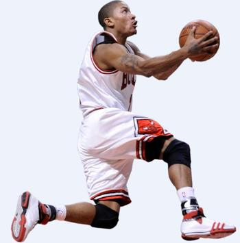 Derrickrose_display_image