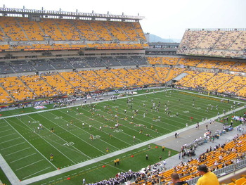 Heinzfield_display_image