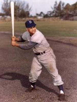 Roycampanella_display_image