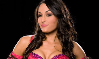 brie bella became the ninth different holder of the divas championship