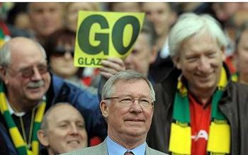 Glazers_display_image