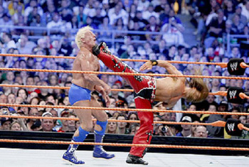 Shawn-michaels-vs-ric-flair_display_image