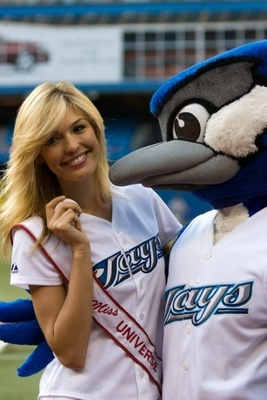 Bluejays_display_image_display_image