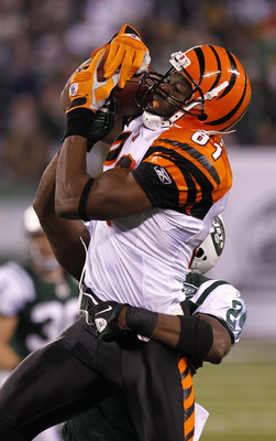 EAST RUTHERFORD, NJ - NOVEMBER 25: Terrell Owens #81 of the Cincinnati Bengals catches a pass under pressure from Darrell Revis #24 of the New York Jets at New Meadowlands Stadium on November 25, 2010 in East Rutherford, New Jersey. The Jets defeated the