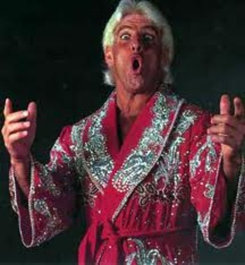 Ricflair_display_image