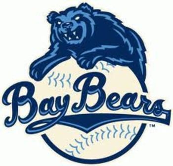 Baybear_display_image