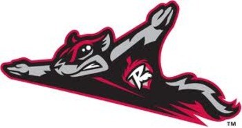 Flyingsquirrels_display_image