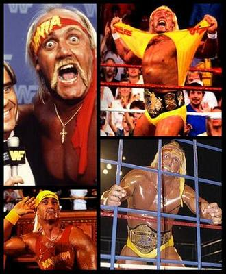 19hulkhogan_display_image