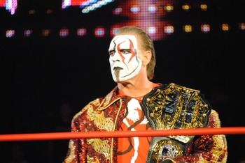 Sting3_display_image