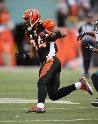 CINCINNATI - NOVEMBER 16:  T.J. Houshmandzadeh #84 of the Cincinnati Bengals runs with the ball during the NFL game against the Philadelphia Eagles at Paul Brown Stadium on November 16, 2008 in Cincinnati, Ohio. The Eagles and Bengals played to a 13-13. (