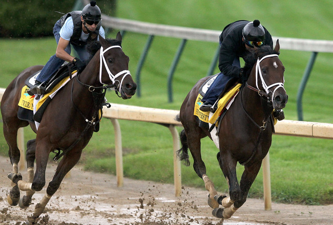 LOUISVILLE, KY - MAY 01:  Uncle Mo works out along side Stay Thirsty during the morning exercise session in preparation for the 137th Kentucky Derby at Churchill Downs on May 1, 2011 in Louisville, Kentucky.  (Photo by Matthew Stockman/Getty Images)