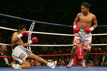 Eric_morales_4_a_world_of_boxing_display_image