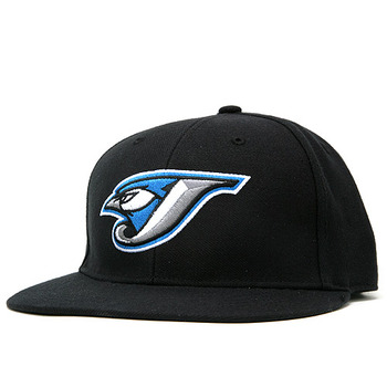 Jays_display_image