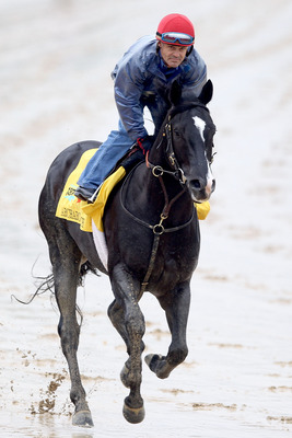 LOUISVILLE, KY - MAY 02: ArchArchArch runs runs during the morning exercise session in preparation for the 137th Kentucky Derby at Churchill Downs on May 2, 2011 in Louisville, Kentucky.  (Photo by Matthew Stockman/Getty Images)