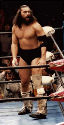 Bruiser-brody_display_image
