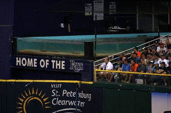 ST PETERSBURG, FL - OCTOBER 22:  Rays swim in the tank in the outfield next to fans as the Philadelphia Phillies take on the Tampa Bay Rays during game one of the 2008 MLB World Series on October 22, 2008 at Tropicana Field in St. Petersburg, Florida.  (P