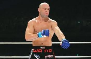 Wanderlei_display_image