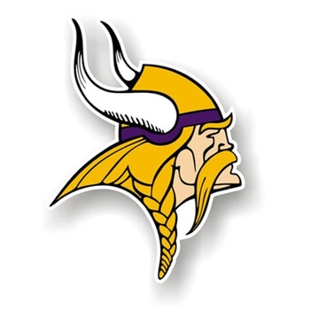 Minnesotavikings_display_image