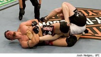 Frank Mir with a submission victory over Brock Lesnar