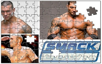 Sdjigsaw_display_image