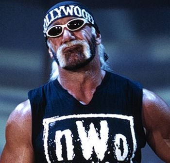 Hollywood_hogan_display_image