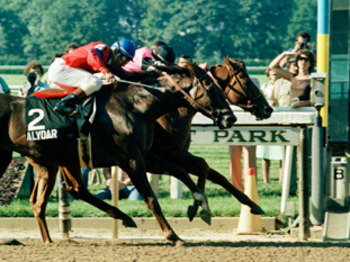 Affirmedwins2_display_image