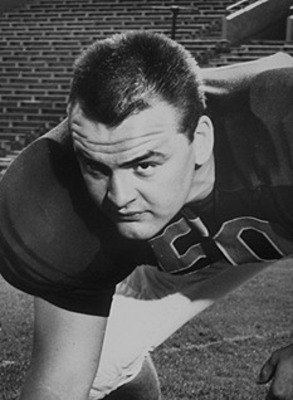 Dickbutkus_display_image