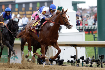 LOUISVILLE, KY - MAY 07:  Jockey Jesus L. Castanon, riding Shackleford #14, leads the field down the front stretch at the start of the 137th Kentucky Derby at Churchill Downs on May 7, 2011 in Louisville, Kentucky.  (Photo by Rob Carr/Getty Images)