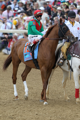 LOUISVILLE, KY - MAY 07:  Jockey John Velazquez, riding Animal Kingdom #16, is escourted onto the track by an outrider during the 137th Kentucky Derby at Churchill Downs on May 7, 2011 in Louisville, Kentucky.  (Photo by Matthew Stockman/Getty Images)
