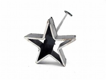 Cowboystar-2_display_image