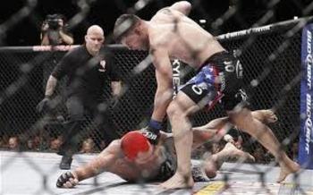 Brian Stann unloading on a helpless Chris Leben at UFC 125