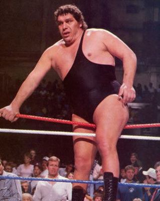 Andre-the-giant_display_image