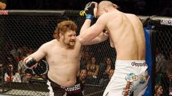 Roy Nelson unloading a barrage of punches on Stefan Struve