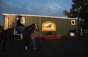 BALTIMORE, MD - MAY 19: A horse is led past the stakes barn at Pimlico Race Course during morning workouts on May 19, 2011 in Baltimore, Maryland. The 136th running of the Preakness Stakes will be run on Saturday.  (Photo by Rob Carr/Getty Images)