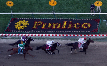 BALTIMORE - MAY 15:  First Dude, ridden by Ramon Dominguez #11 leads Super Saver, ridden by Calvin Borel #6, Caracortado, ridden by Paul Atkinson #9, and Jackson Bend , ridden by Mike Smith #8 on the font strech during the 135th running of the Preakness S