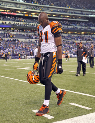 INDIANAPOLIS - NOVEMBER 14: Terrell Owens #81 of the Cincinnati Bengals walks off of the field following the Bengals 23-17 loss to the Indianapolis Colts in the NFL game at Lucas Oil Stadium on November 14, 2010 in Indianapolis, Indiana. The Colts won 23-
