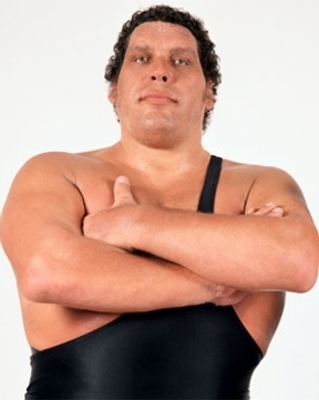 Andre The Giant Died In Ring