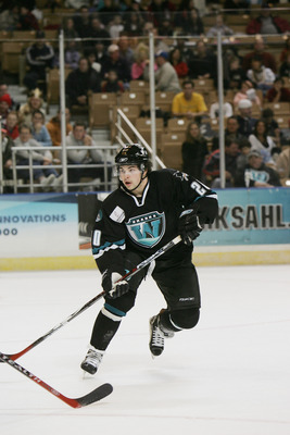 The Worcester Sharks brought AHL hockey back to their city in a hurry one year after the IceCats moved.